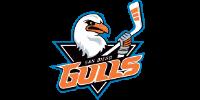 San Diego Gulls